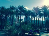 """Art Trek"" to the Southwest: the Winter Vistas of Phoenix andMesa"