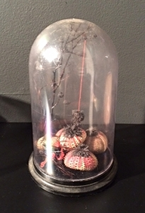 "Nola Avienne: ""Sea Building"" (install view). Black coral, whip coral, magnets, iron filings, silk thread, sea urchins, distressed acrylic glass bell jar, 8"" x 6"" x 6"", 2015."